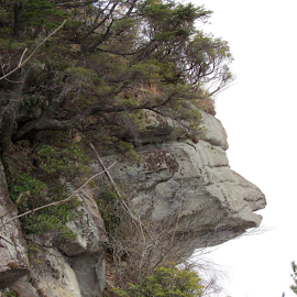 Ceasars Head, SC  by Terry Linton - Nature Up Close Rock & Stone ( landmark, nature, vistors site, trees, stone, rock, formation, , Earth, Light, Landscapes, Views )