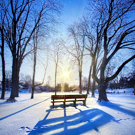 Together Forever by Phil Koch - City,  Street & Park  City Parks ( vertical, bench, icicles, farmland, yellow, cave, leaves, love, sky, nature, tree, autumn, snow, perspective, light, orange, twilight, art, cliff, agriculture, horizon, portrait, ra  y, lake   michigan, environment, dawn, winter, season, serene, trees, lines, inspirational, shore, natural light, wisconsin, summe  r, beauty, landscape, frozen, phil koch, sun, photography, farm, ice, horizons, inspired, clouds, office, park, green, beautiful, scenic, morning, shadows, field, red, blue, sunset, amber, peace, meadow, beam, earth, sunrise )