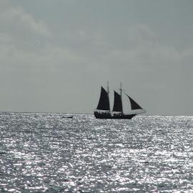 Silver Seas by Marla Kaufman - Transportation Boats