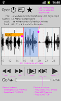 Screenshot of Repeat player WorkAudioBook