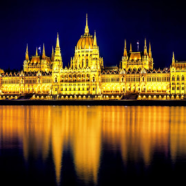 Budapest by night by Florin Ihora - Buildings & Architecture Public & Historical ( hungary, parliament, budapest, night, danube )