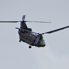 Chinook by Tim Clifton - Transportation Helicopters