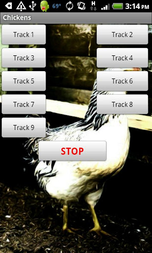 Chicken Sound Effects