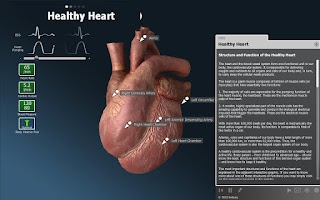 Screenshot of bodyxq heart