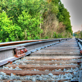 by Dipali S - Transportation Railway Tracks ( railway, transport, railroad, train, tracks )