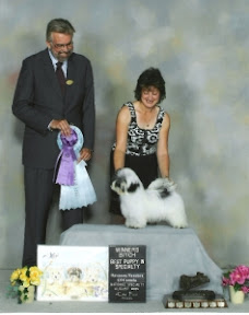 Winners Female and Best Puppy in Specialty