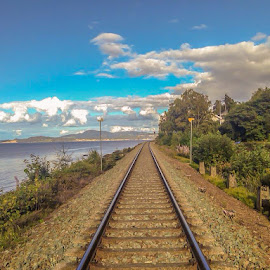 Traveling close to the fjord by Norman Pozuelos - Landscapes Travel ( train tracks )