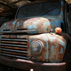 Abandoned by Gebyar Andyono - Transportation Automobiles ( car, abandoned car, old car, indonesia, pixoto, abandoned )