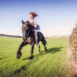 Free Spirits by Ian Taylor - Animals Horses ( field, horsepony, fell, canter, horse, fast, bareback )