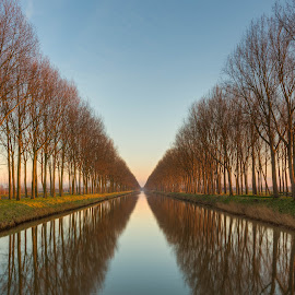 by Tim Verbeeck - Landscapes Sunsets & Sunrises ( hdr, moods, colorful, colors, reflections, belgium, happiness, vibrant, canal, winter, inspiration, nature, emotions, trees,  )
