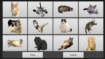 Screenshot of Cat Painter