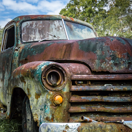 Rusty 53 Chevy Turck by Robert Willson - Transportation Automobiles ( rusty truck, places, 53 chevrolet, usa, robert willson, 53 chevy truck, willson, fl, florida, cars, seville, 53 front, bob willson, 53 chevy, documentary, central, 53 chevrolet truck )