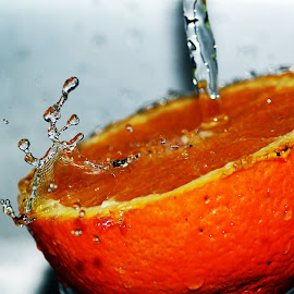 Orange Splash by Filip Baotić - Food & Drink Fruits & Vegetables ( water, orange, macro, splash, color, colors, landscape, portrait, object, filter forge )