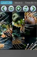 Screenshot of Underwater Wallpapers