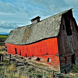 To many hard winters by Vern Tunnell - Buildings & Architecture Decaying & Abandoned ( farm, ranch, red, barn, abandoned )