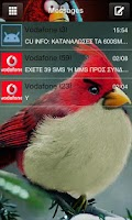 Screenshot of Go SMS Pro Angry BirdsR theme