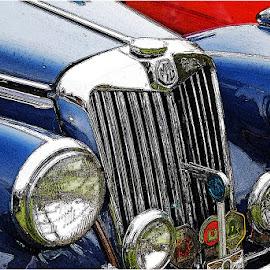 MG by Johann Perie - Transportation Automobiles ( vintage, mg, car show )