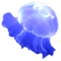 Jellyfish Sticker icon
