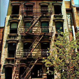 The Great Escape! by Tricia Scott - Buildings & Architecture Other Exteriors ( building, fire escape, buildings, front, fire )