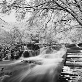 Winter by Tea Jo - Landscapes Waterscapes ( blackandwhite, plitvice, winter, black and white, snow, waterfall, lakes, croatia )