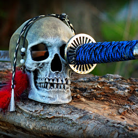 Socket Sword by Teresa Delcambre - Artistic Objects Still Life ( skull, handle, blade, socket, skeleton, feathers, teeth, pirate, sword )
