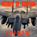 World of TopGun (F14 - F16) icon