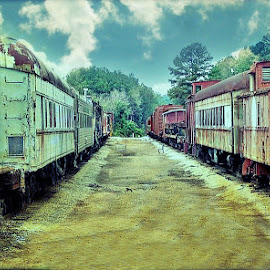 by Carol Stiles - Transportation Trains