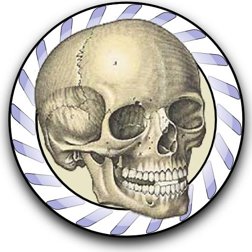 Speed Bones MD LOGO-APP點子