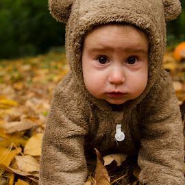Sofia by Aris Canis von Furcsoara - Babies & Children Babies ( bear, cute baby, baby in nature, baby 8 months, bear costume baby, baby girl, baby, cute,  )