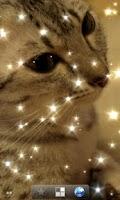 Screenshot of Glitter Live Wallpaper Free