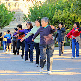 Exercise at Linglong Park by Leong Jeam Wong - People Street & Candids ( mass, unison, park, participation, exercise, health, people, chinese )