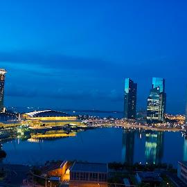 Singapore at night by Wim Swyzen - City,  Street & Park  Skylines ( skyline, asia, marina bay sands, nightview, marina bay, singapore )