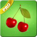 Fruits Live Wallpaper (Pro) icon