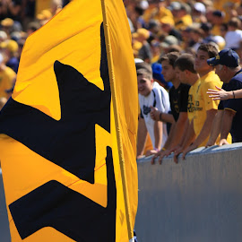 Flying WVU by Craig Gunter - Sports & Fitness American and Canadian football