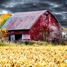 In the distance.. by Marsha Biller - Buildings & Architecture Other Exteriors ( field, red, dark sky, old barn, scenic )