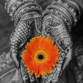by Yogesh Waikul - Wedding Other