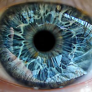 eye.jpg ed oct 2014.jpg