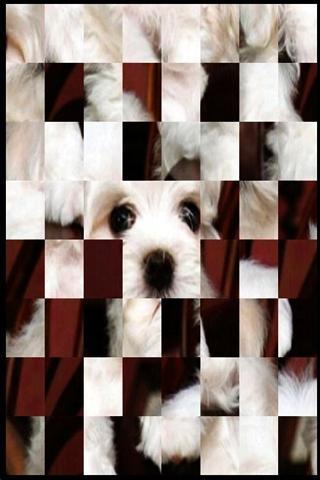 可愛的小狗益智± 3