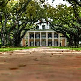 Oak Alley Plantation by Dawn Coen - Buildings & Architecture Public & Historical ( vacherie, hdr, plantation, oak alley )