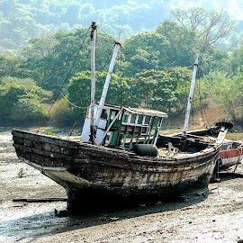 boat in dry mud by Hariprasad Bobhate - Transportation Boats ( on the way, dry mud, old boat, unused, elephanta, parked, boat, wooden boat,  )