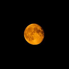 Harvest moon 10-09-14 by Warren Slater - News & Events World Events ( moon, 2014, harvest )