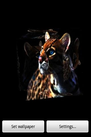 3D豹070