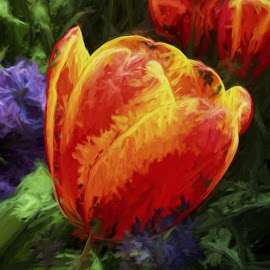 Tulips and Iris by Allen Crenshaw - Digital Art Things ( topaz impression, gardens, iris, tulips, flowers, painting, photography )