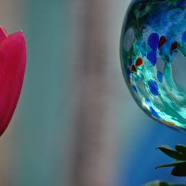 My Garden Art.  Photo by Janet Young-Abeyta~ by Janet Young- Abeyta - Artistic Objects Glass