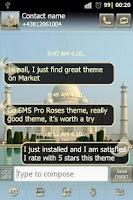 Screenshot of Taj Mahal GO SMS Pro theme