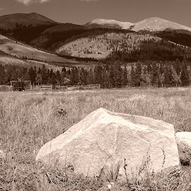 Boreas Pass by Donald Henninger - Novices Only Landscapes ( ranch, mountains, autumn, black and white, meadow, colorado, landscape, prairie )