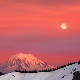 Snow mountain and full Moon at dusk by William Lee - Landscapes Mountains & Hills ( moon, mountain, beauty, travel, landscape, usa, washington, sky, nature, cold, full, snow, weather, pink, snowy mountain, clouds, orange, beautiful, white, sunset hour, dusk, red, winter, sunset, background, trees, full moon, high, view, snow mountain )