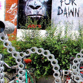 Chains by Ronnie Caplan - City,  Street & Park  Neighborhoods ( bicycles, streetscene, greenery, chains, poster, locks, movie, bricks, wall, sidewalk, shrubs )