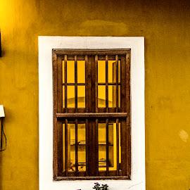 Window to the world by Bharath Pasupuleti - Buildings & Architecture Homes ( books, window, pondicherry, india, yellow )