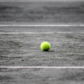 by Marjorie Bazluki - Sports & Fitness Tennis